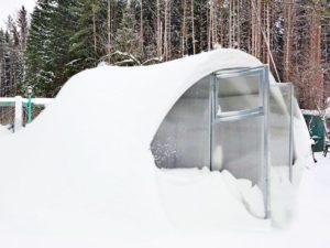 Что можно строить из поликарбоната зимой